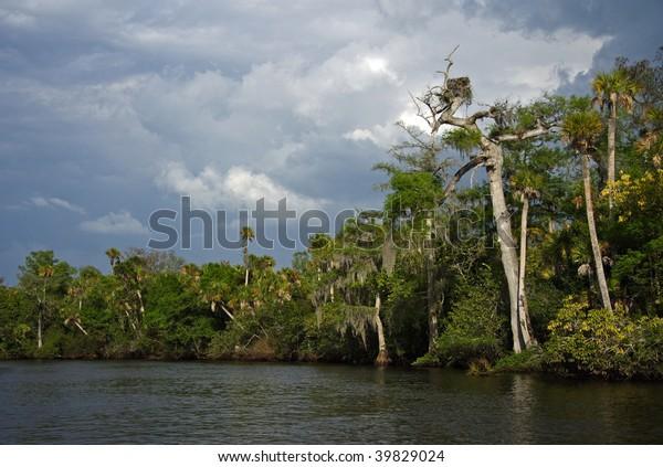 Loxahatchee National Wild & Scenic River, Florida