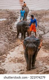 LUANG PRABANG, LAOS - AUGUST 18, 2015: Young mahouts is bathing elephants in the Mekong river near Pak Ou cave, Luang Prabang, Laos.
