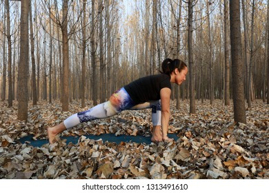 Luannan County - November 11th, 2018: A woman practiced yoga in the woods, Luannan County, Hebei Province, China