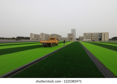 LUANNAN COUNTY - Oct. 15, 2018: Automobile Rolling Margin Line at the Site of Man-made Lawn Laying Project, Luannan County, Hebei Province, China
