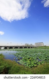 LUANNAN COUNTY - SEPTEMBER 15: North River Park scenery on September 15, 2014, Luannan county, Hebei Province, China
