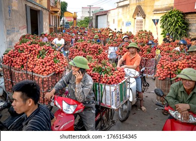 Luc Ngan District, Bac Giang Province, Vietnam - July 10, 2020: Farmers harvest litchi fruits and transport them by motorbike for sale at the market