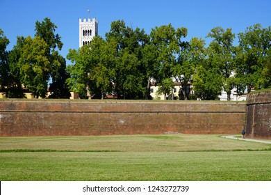 LUCCA, ITALY -30 SEP 2018- View of the landmark Renaissance city walls in Lucca, a historic city in Tuscany, Central Italy.