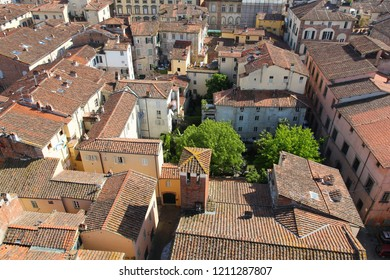 Lucca, Italy - medieval town of Tuscany. Aerial view of rooftops.