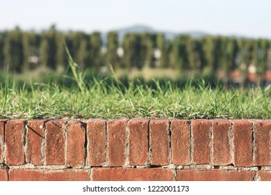 Lucca, Italy, october 29,2018: bricks on the wall of lucca