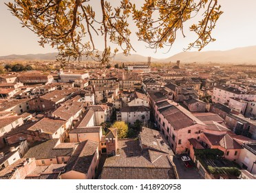 Lucca panoramic view of the old city, Tuscany, Italy
