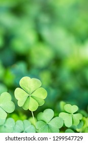 Luck Irish Four Leaf Clover Background Design Element