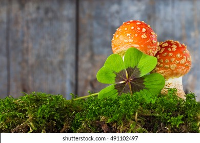 lucky charm in front of wood background