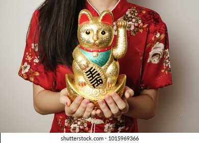 Lucky Chinese Cat isolated over traditional red chinese dress background