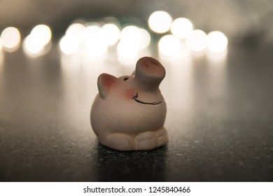 Lucky pig isolated bokeh background