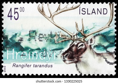 LUGA, RUSSIA - FEBRUARY 13, 2019: A stamp printed by ICELAND shows reindeer or caribou - a species of deer with circumpolar distribution, native to Arctic tundra regions, circa 2003