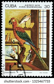 LUGA, RUSSIA - FEBRUARY 17, 2019: A stamp printed by CUBA shows The Cuban red macaw - a species of macaw native to the main island of Cuba, circa 1978