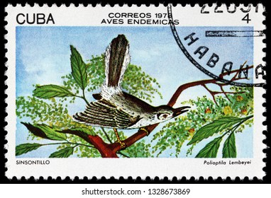 LUGA, RUSSIA - FEBRUARY 17, 2019: A stamp printed by CUBA shows Cuban gnatcatcher - a species of bird in the family Polioptilidae. It is endemic to Cuba, circa 1978