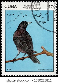 LUGA, RUSSIA - FEBRUARY 17, 2019: A stamp printed by CUBA shows Cuban blackbird - a species of bird in the family Icteridae. It is endemic to Cuba, circa 1977