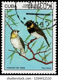 LUGA, RUSSIA - FEBRUARY 17, 2019: A stamp printed by CUBA shows Cuban grassquit - a small bird. It is found in Bahamas, Cuba, and Turks and Caicos Islands, circa 1977