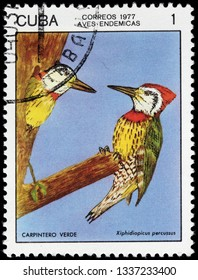 LUGA, RUSSIA - FEBRUARY 17, 2019: A stamp printed by CUBA shows  Cuban green woodpecker - a species of bird in the family Picidae. It is endemic to Cuba, circa 1977