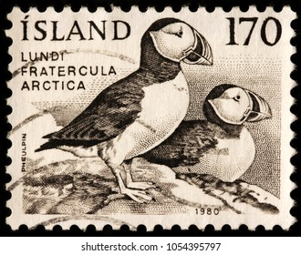 LUGA, RUSSIA - JANUARY 16, 2018: A stamp printed by ICELAND shows Atlantic (common) puffin,  - species of seabird in the auk family, native to the Atlantic Ocean, circa 1980