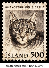 LUGA, RUSSIA - JANUARY 16, 2018: A stamp printed by ICELAND shows beautiful domestic cat - a small, typically furry, carnivorous mammal, circa 1982