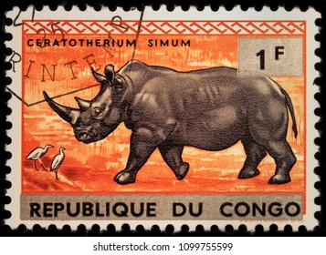 LUGA, RUSSIA - JANUARY 23, 2018: A stamp printed by CONGO shows white rhinoceros or square-lipped rhinoceros - the largest extant species of rhinoceros, circa 1960