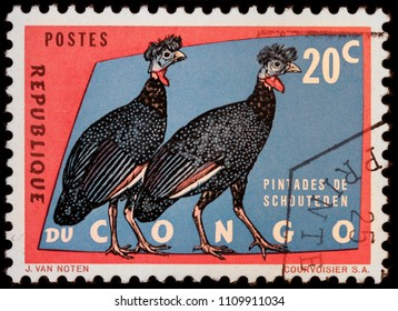LUGA, RUSSIA - JANUARY 23, 2018: A stamp printed by CONGO shows two Guineafowls; sometimes called pet speckled hens, or original fowls, circa 1963