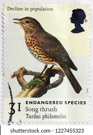 LUGA, RUSSIA - MAY 14, 2017: A stamp printed by GREAT BRITAIN shows Song Thrush that breeds across much of Eurasia, circa 1998