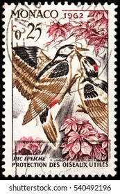 LUGA, RUSSIA - NOVEMBER 29, 2016: A stamp printed by MONACO shows great spotted woodpecker (Dendrocopos major) is a bird species of the woodpecker family (Picidae), circa 1962
