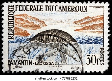 LUGA, RUSSIA - OCTOBER 12, 2017: A stamp printed by CAMEROON shows African Manatee - marine mammal sometimes known as sea cow, circa 1962