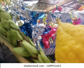 A lulav and etrog in a decorative sukkah hut on the Jewish holiday of Sukkot. Features a Sukka Sukkos , Etrog Citron Esrog, Lulav and Party Decorations in background.
