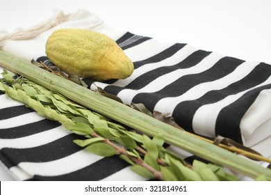 Lulav and Etrog, Myrtle, willow, and tallit, against a white background , symbols of the Jewish festival of Sukkot