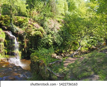 lumb hole falls a waterfall in woodland at crimsworth dean near pecket well in calderdale west yorkshire