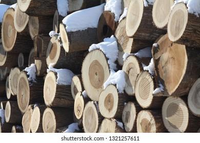 Lumber yard in the winter snow.
