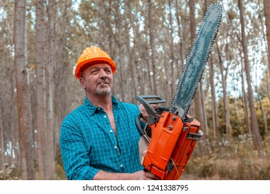 lumberjack in action at work in a forest with a chainsaw