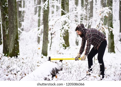 lumberjack concept. lumberjack man working in the winter forest. Woodsman with trees covered by snow on background. Hipster woodsman concept. Man with warm gloves puts axe into tree stem in forest.