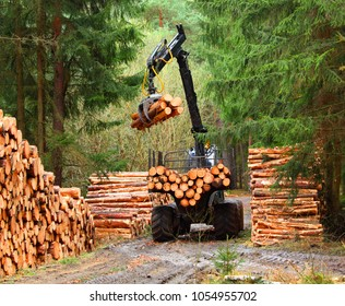 Lumberjack with modern harvester working in a forest. Wood as a source renewable energy.