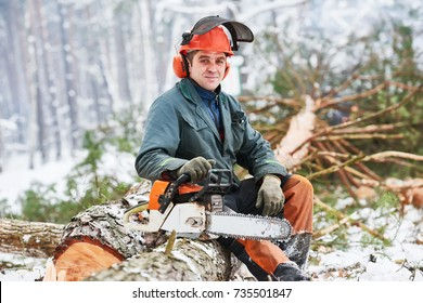 Lumberjack portrait tree in snow winter forest