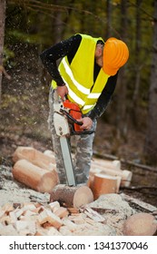 Lumberjack working with chainsaw in a forest