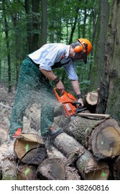 lumberjack is working with protective clothing in the forest