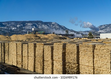 A lumberyard and mill during a cold sunny day