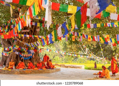 LUMBINI, NEPAL - NOVEMBER 15 : Pilgrims visit the birthplace of Buddha during Buddha Jayanti Young monk prayer, on November 15, 2013 in Lumbini, Nepal.