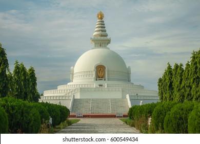 Lumbini Peace Pagoda (Shanti Stupa) surrounded with lotus fields, Nepal