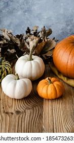 Lumina pumpkins Halloween decoration closeup