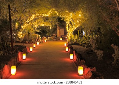 Luminarias and tree lights decorate a Southwestern garden for Christmas in this night scene.