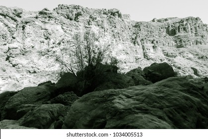 Lunar landscape of beautiful lost Wadi in Jordan
