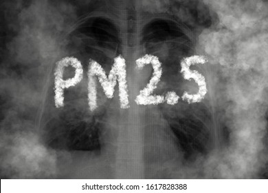 Lung disease from PM2.5 pollution