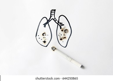 lungs of smoker with cigarette burned , No Smoking Concept