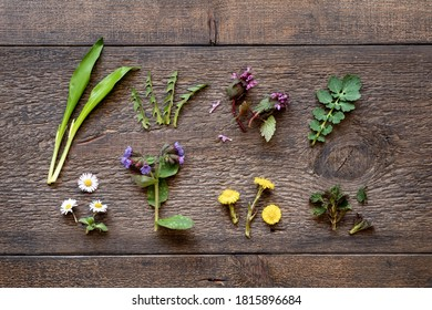 Lungwort, wild garlic, young nettles, dandelion and other herbs collected in early spring on a wooden background