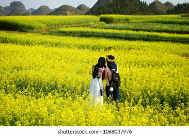 Luoping Filed Mustard is located in Yunnan, China. In spring, all the filed changes like a yellow carpet.