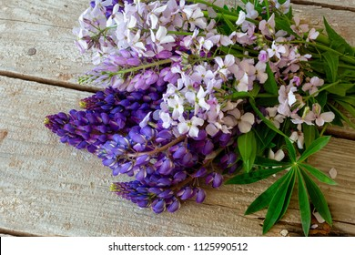 Lupin flowers on a rustic wooden backdrop.