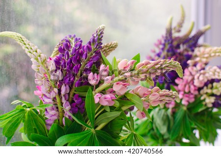 Lupine bouquet wild spring flowers stock photo edit now 420740566 bouquet of wild spring flowers mightylinksfo