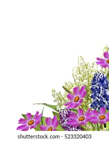 lupines colored flowers on a white background. lily of the valley.